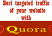 Promote your website for 20 HQ Quora Answers