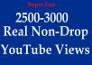 2500 Non-Drop Safe Views wihtin 24 hours