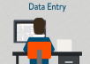 data entry service ( write anything you want or entry any data )