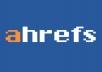 Get Ahrefs Report for 1 Website