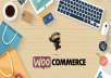 I'll Create A Responsive Wordpress Ecommerce Website Online Store