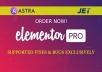 Use Elementor Pro Astra Pro Mini Agency And Jet Bundle to your Wordpress site