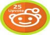 High Quality 25+ World Wide Reddit Upvote