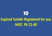 Find and register 10 expired tumblrs with MOZ PA 20-40