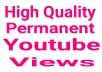 YouTube video promotion via real users with fast delivery