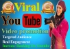 Real YouTube Video Marketing Promotion