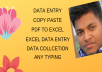 Any Data Entry Services for your Business
