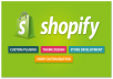 fix shopify errors in 24 hours