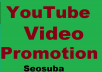 NON-DROP & HIGH QUALITY YOUTUBE VIDEO PROMOTION