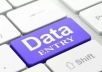 Data Entry, copy paste and writing service