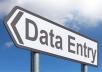 Data Entry Clerk, Digital marketing, Pdf conversions, photo editing, video editing.