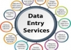 Experience in Data Entry, MS Excel, MS Word