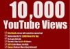 Organic YouTube Video Promotion More Than Ten Thousand People Will See Your Video