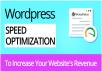 Do Wordpress Website Speed Optimization By Google Pagespeed And Gtmetrix