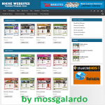 NICHE WEBSITE RESELLER - 100 Autopilot & Newbie Friendly - 20 Websites Included