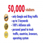50,000 visitors from Google and Bing