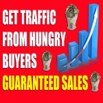 DRIVE 1,000,000+ Real Human Traffic to your Website or Affiliate link.