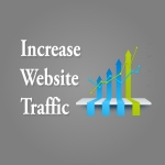 Niche Targeted 1,000,000 Website Traffic with Proof