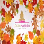 Im goint to create 5 amazing video intro animations