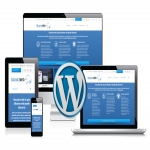 design and develop your wordpress website