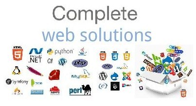 Seeking a Web Solution Manager