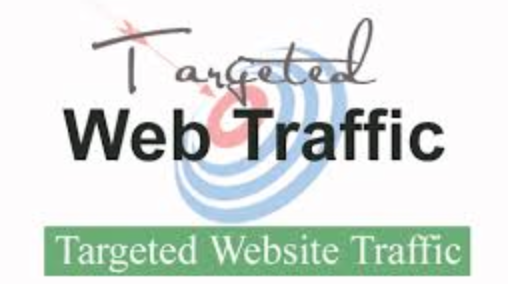 Real organic traffic to my e commerce website.
