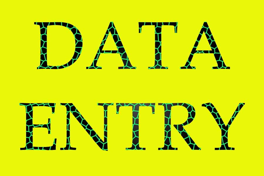 need a data entry specialist whice image to ms word